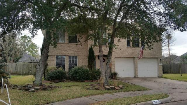 14835 Bellflora Court, Houston, TX 77083 (MLS #84193579) :: Texas Home Shop Realty