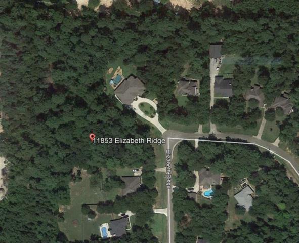 11853 Elizabeth Ridge, Conroe, TX 77304 (MLS #84214128) :: Magnolia Realty