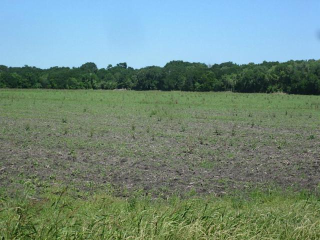 0 Psencik Road, Richmond, TX 77469 (MLS #8421438) :: Giorgi Real Estate Group