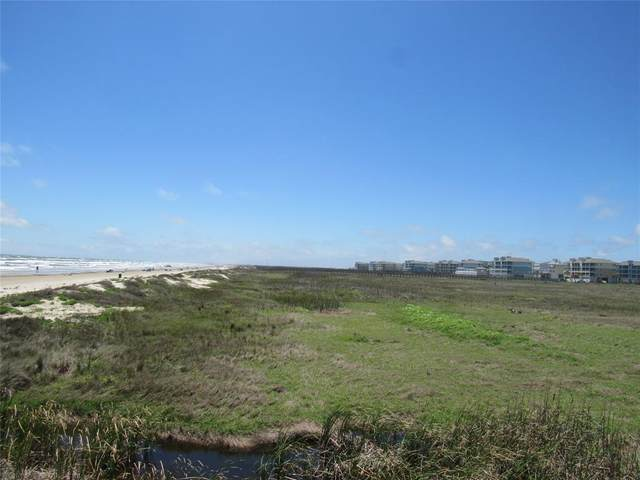 4114 Sandhill Crane Way, Galveston, TX 77554 (MLS #84219927) :: Lerner Realty Solutions
