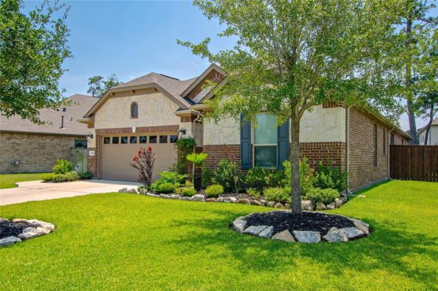 10206 Eagle Hollow Drive, Humble, TX 77338 (MLS #84291160) :: The SOLD by George Team