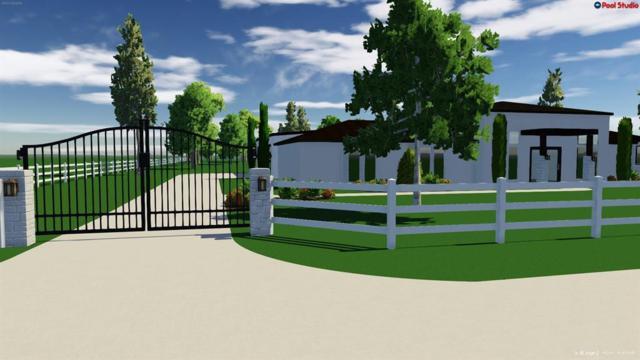 000 Charles Ray Lane, Conroe, TX 77302 (MLS #84296977) :: NewHomePrograms.com LLC