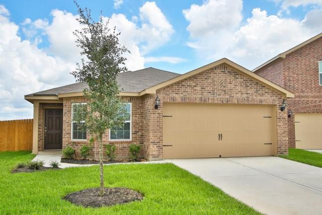 1001 Strawberry Ridge Drive, Katy, TX 77493 (MLS #84396669) :: Connect Realty