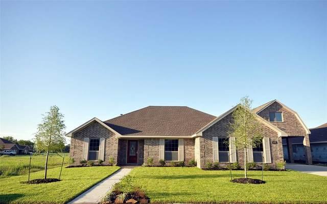 6407 Grapevine Bend, Manvel, TX 77578 (MLS #84422041) :: The Heyl Group at Keller Williams