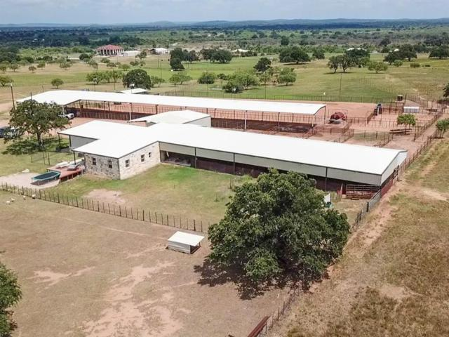 1642 SW 1642 County Road 102, Llano, TX 78643 (MLS #84468758) :: The SOLD by George Team