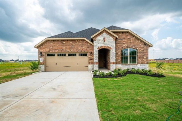 411 Summer Sky Lane, Rosenberg, TX 77469 (MLS #84475686) :: The SOLD by George Team