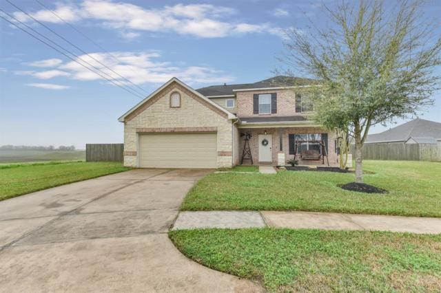 210 Unique Court, Rosharon, TX 77583 (MLS #84482849) :: Texas Home Shop Realty