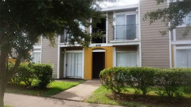 12647 Ashford Meadow Drive, Houston, TX 77082 (MLS #84506634) :: CORE Realty