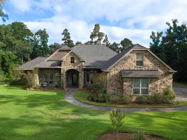 27302 E Benders Landing Boulevard, Spring, TX 77386 (MLS #84541980) :: Giorgi Real Estate Group
