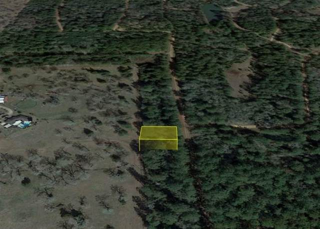 0 Jackrabbit Drive, Hempstead, TX 77445 (MLS #84640490) :: My BCS Home Real Estate Group