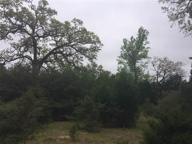 2051 County Road 200, Centerville, TX 75833 (MLS #84715818) :: Christy Buck Team