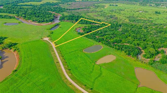 Tract 14 River Haven Drive, Navasota, TX 77868 (MLS #84833490) :: The SOLD by George Team