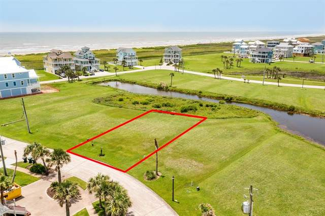 25714 Spotted Sandpiper Drive, Galveston, TX 77554 (MLS #84838503) :: The Freund Group