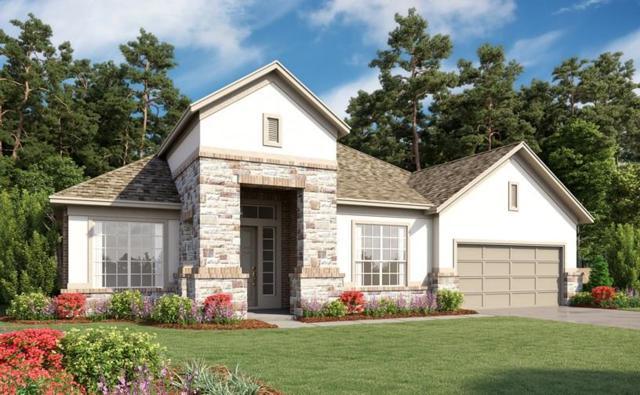 32019 Autumn Orchard Creek, Conroe, TX 77385 (MLS #84905915) :: Giorgi Real Estate Group