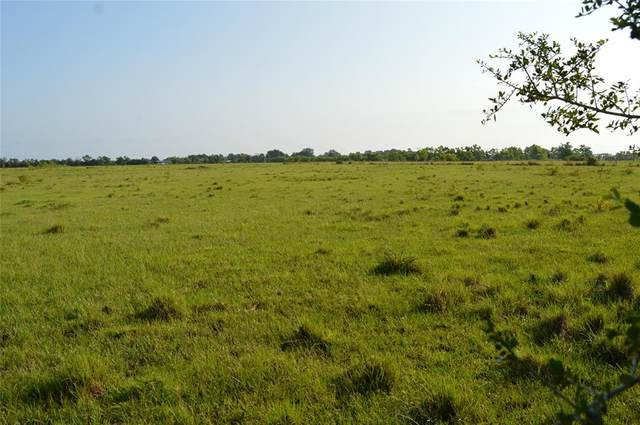 TR 1 County Road 2276, Cleveland, TX 77327 (MLS #84947383) :: Lerner Realty Solutions