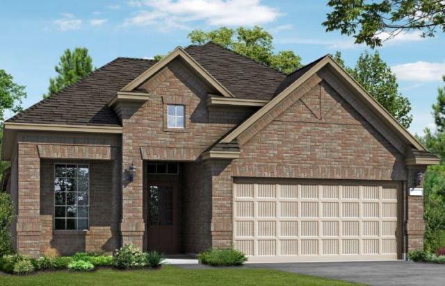 23826 Northwood Terrace Lane, Katy, TX 77493 (MLS #84949452) :: The Jennifer Wauhob Team