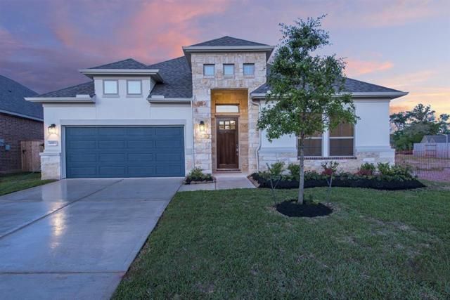 18953 Columbus Mill Drive, New Caney, TX 77357 (MLS #84964054) :: The SOLD by George Team