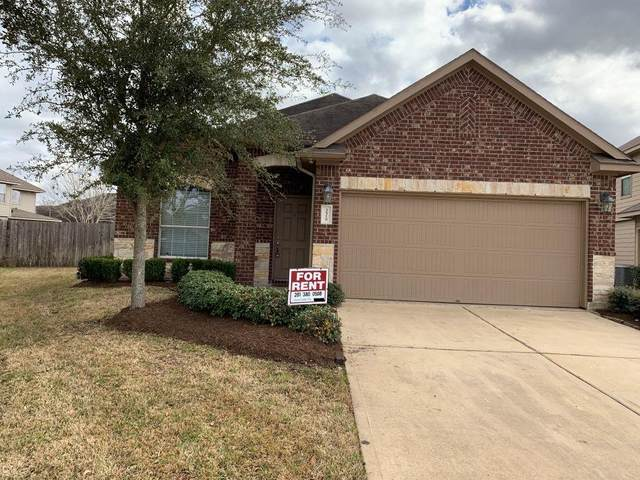 3518 Brunswick Meadows Drive, Houston, TX 77047 (MLS #85108570) :: The SOLD by George Team