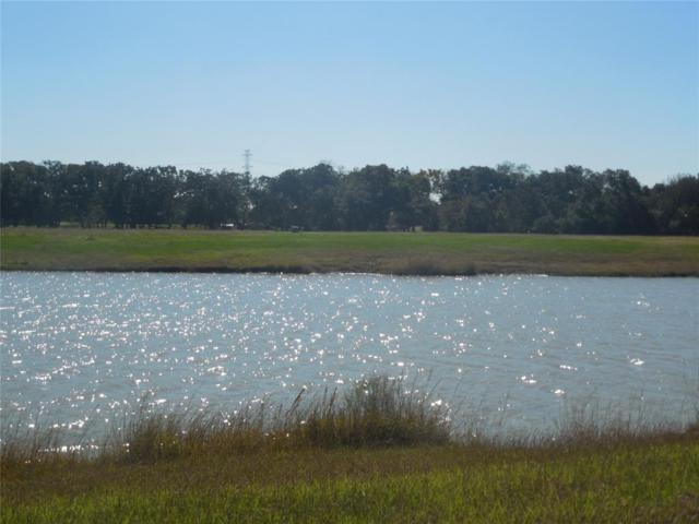 6906 Brazos Lakes, Richmond, TX 77469 (MLS #85188388) :: The SOLD by George Team