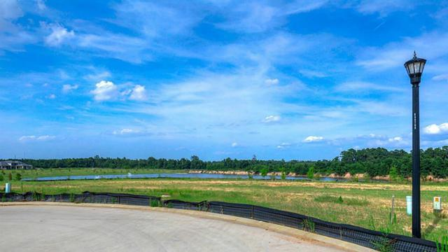 4810 Laguna Verde Court, Spring, TX 77389 (MLS #85191833) :: Giorgi Real Estate Group