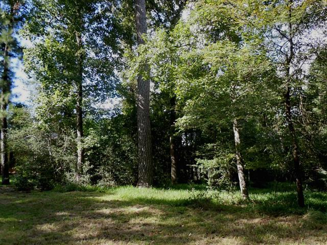 1903 E Lake Drive, Huntsville, TX 77340 (MLS #85243646) :: Mari Realty