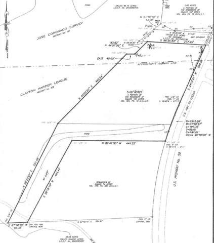 5.68 AC Hwy 59, Cleveland, TX 77328 (MLS #85250739) :: Ellison Real Estate Team