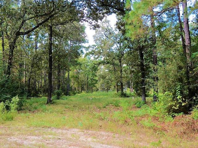 TBD Deep Woods, Plantersville, TX 77363 (MLS #85331666) :: The Sansone Group