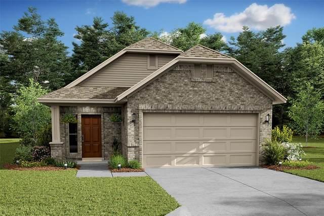 30409 Butternut Oak Lane, Magnolia, TX 77355 (#85380002) :: ORO Realty