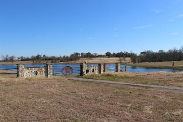 53 Pecan Hills, Plantersville, TX 77363 (MLS #85445590) :: The SOLD by George Team