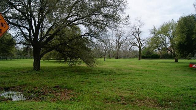 32103 Fulbrook, Fulshear, TX 77441 (MLS #85463779) :: Lion Realty Group/Clayton Nash Real Estate