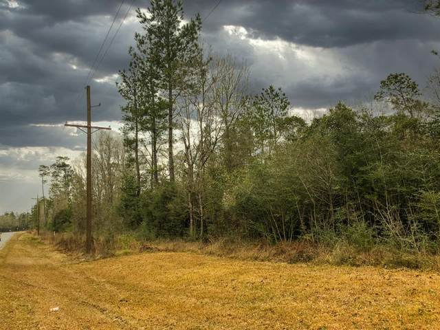 0 Old Spurger Hwy, Silsbee, TX 77656 (MLS #85553837) :: The Property Guys