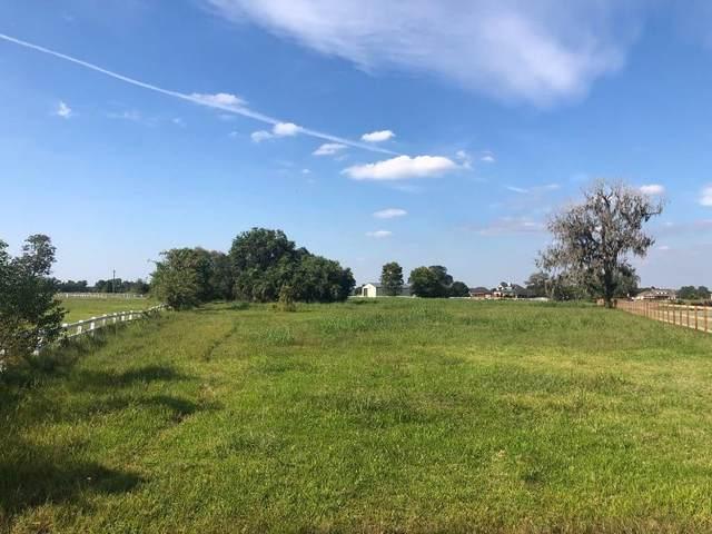 2934 Horse Trail Drive, Rosharon, TX 77583 (MLS #85589626) :: The Queen Team