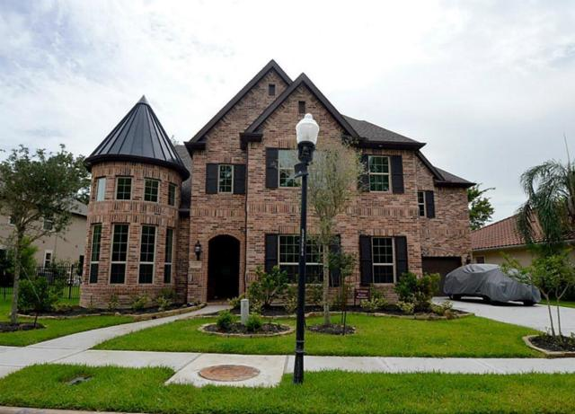 206 Flamingo Island Drive, Missouri City, TX 77459 (MLS #85665699) :: The SOLD by George Team