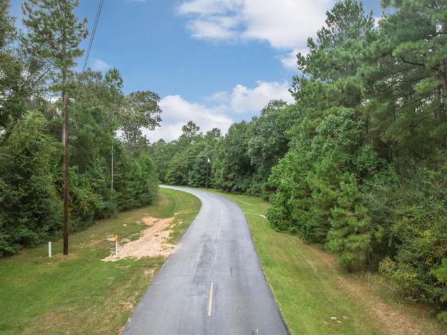 25700 Century Oaks Boulevard, Hockley, TX 77447 (MLS #85675646) :: Texas Home Shop Realty