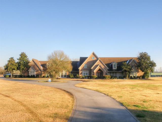 103 E Viejo Drive, Friendswood, TX 77546 (MLS #8569064) :: Christy Buck Team