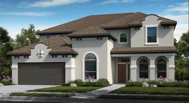 205 Coleman Wake Lane, La Porte, TX 77571 (MLS #85717151) :: Lerner Realty Solutions