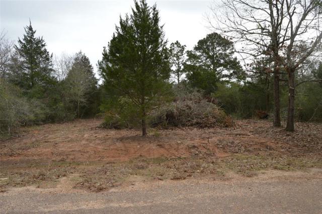 00 Armagh, Hempstead, TX 77445 (MLS #85782681) :: Fairwater Westmont Real Estate