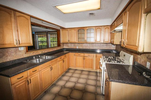 6614 Scribner Road, Houston, TX 77074 (MLS #85817353) :: Krueger Real Estate