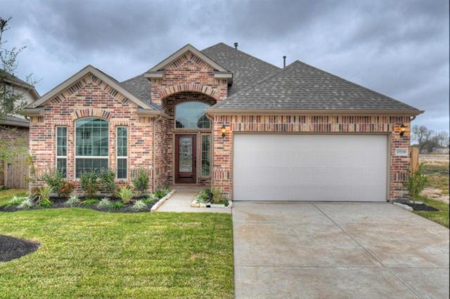 17219 Iver Ironwood Trail, Richmond, TX 77407 (MLS #85894991) :: Texas Home Shop Realty
