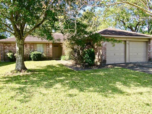 17318 Herrnhut Drive, Webster, TX 77598 (MLS #86002572) :: Texas Home Shop Realty