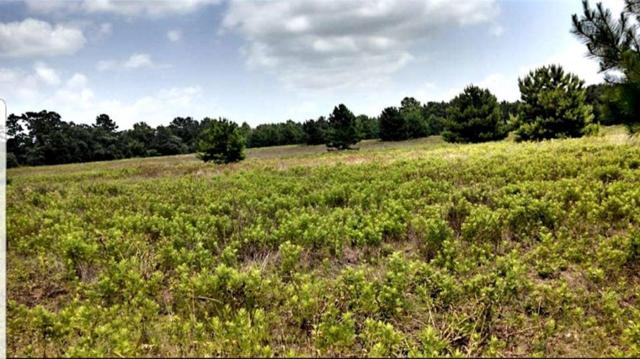 TBD Anderson County Road 114, Elkhart, TX 75839 (MLS #8606980) :: Texas Home Shop Realty