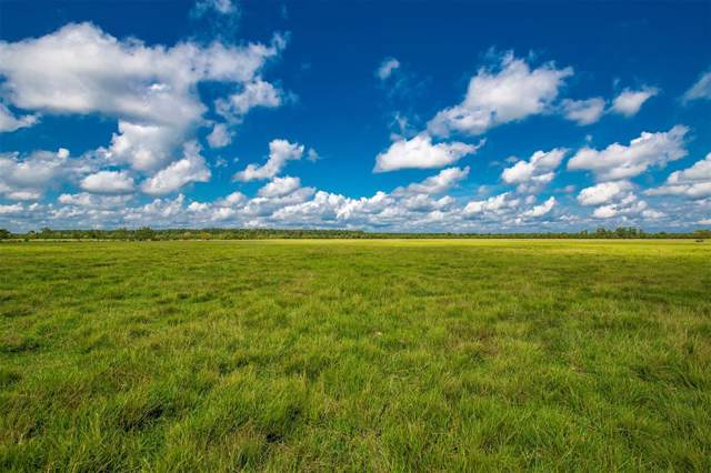 Tract 2 County Road 2285, Tarkington, TX 77327 (MLS #86083908) :: The Bly Team