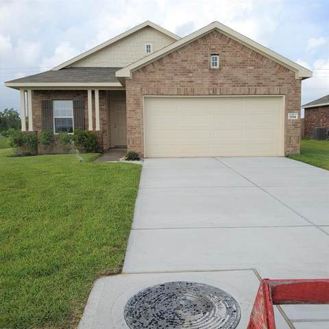 2814 Coral Drive, Texas City, TX 77591 (MLS #86116477) :: The Property Guys