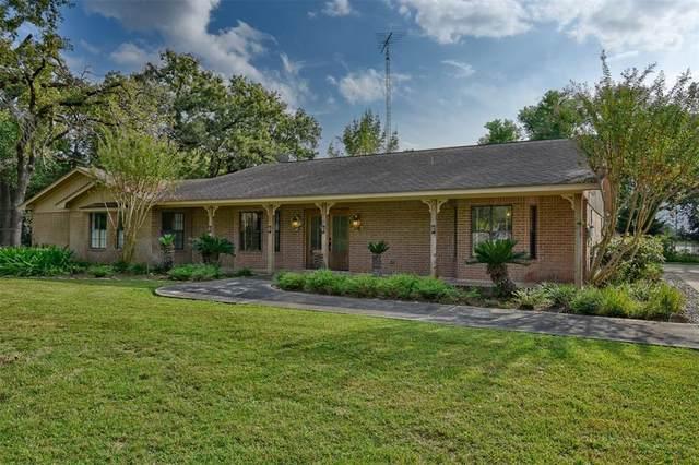 10002 S Bus6, Navasota, TX 77868 (MLS #86129417) :: Texas Home Shop Realty