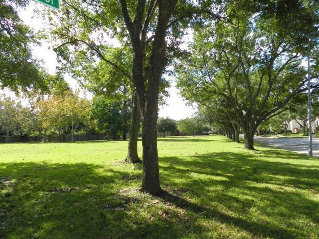 1315 Primrose Lane Lane, Seabrook, TX 77586 (MLS #86168109) :: The SOLD by George Team