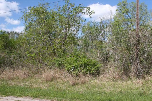 Lot 41 Pecan, Brazoria, TX 77422 (MLS #86300045) :: The SOLD by George Team