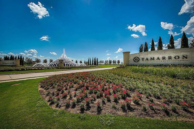 29227 Jacobs River Drive, Katy, TX 77494 (MLS #86302219) :: Team Sansone