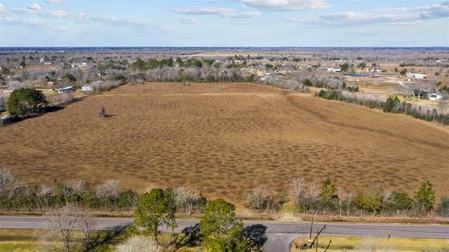 000 County Road 99, Alvin, TX 77511 (MLS #86330996) :: The Home Branch