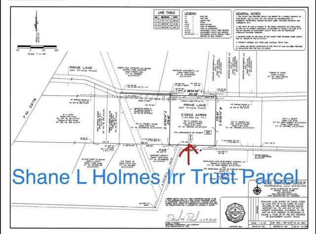 8517 Prine Lane, Magnolia, TX 77354 (MLS #86542796) :: Green Residential