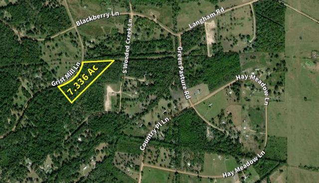 201 Grist Mill Lane, Shepherd, TX 77371 (MLS #86615618) :: The SOLD by George Team
